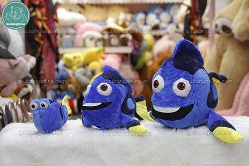 Cá Dory