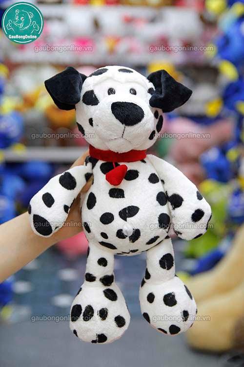 Chó Đốm Bông