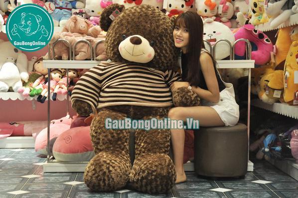 Gấu-Teddy-Socola