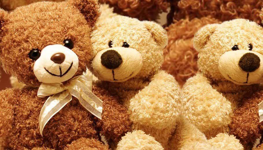 Nguồn gốc gấu teddy
