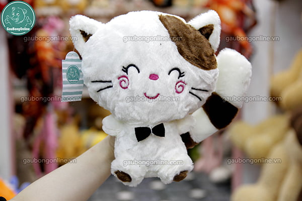 Mèo Mặt Lớn Bông