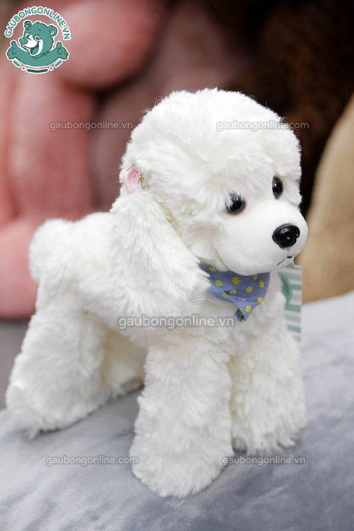 Chó Cừu Bông