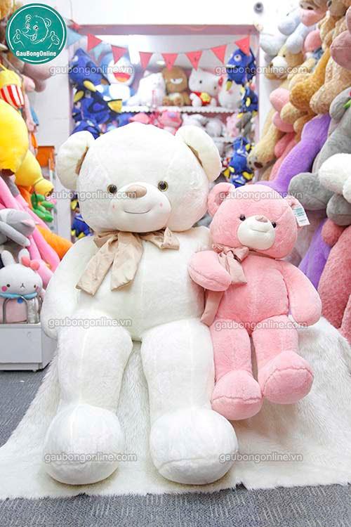 Gấu Bông Teddy Nơ Lụa Đại