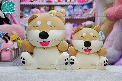 Chó Bông Shiba Chuông