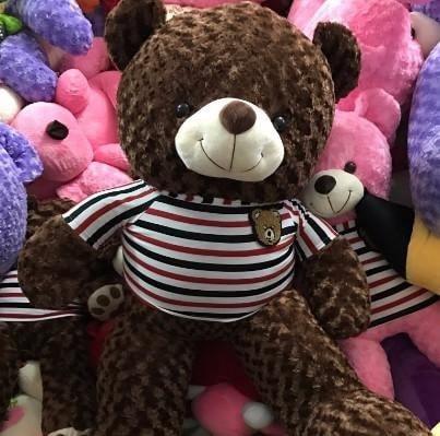 Quà sinh nhật cho bạn gái - Gấu bông Teddy