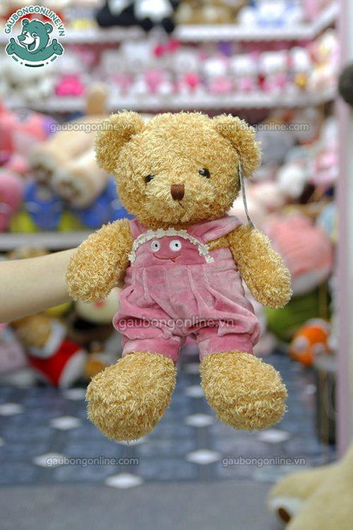 Gấu Bông Teddy Head Tales Yếm