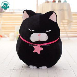 Mèo Amuse Đại