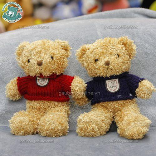 Gấu Teddy Xù Nhỏ