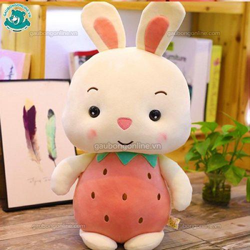 Thỏ Hoa Quả Bông