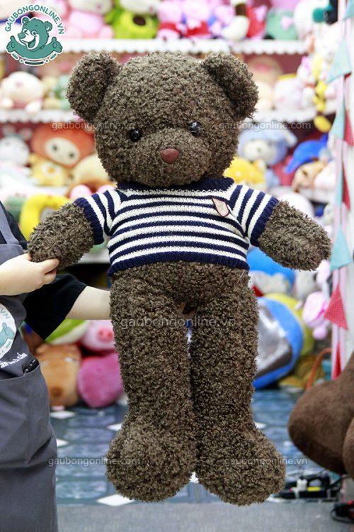 Gấu Bông Teddy Đen Xù