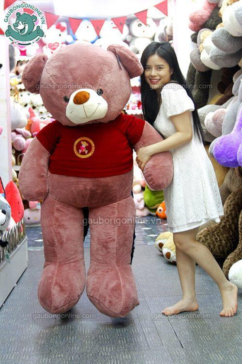 Gấu Bông Teddy Áo Len Teddy