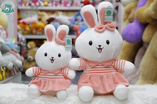 Thỏ Bông Đôi