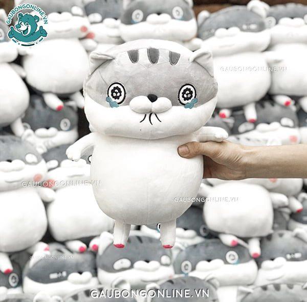 Mèo Bông Ami Bụng Bự
