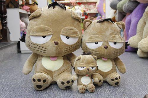 Mèo Bông Dinga Đại