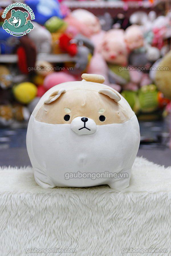 Chó Bông Corgi