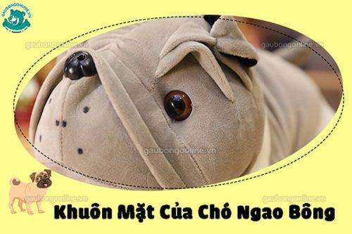 Chó Ngao Bông