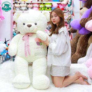 Gấu Bông Teddy Bánh Kem 1m5