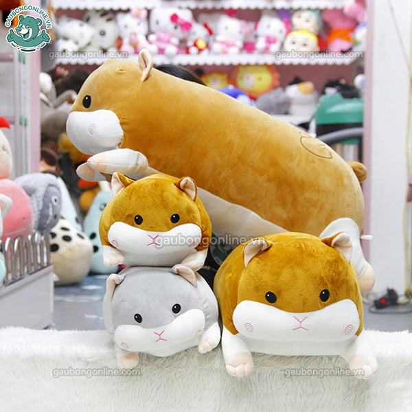 Chuột Bông Hamster Nằm