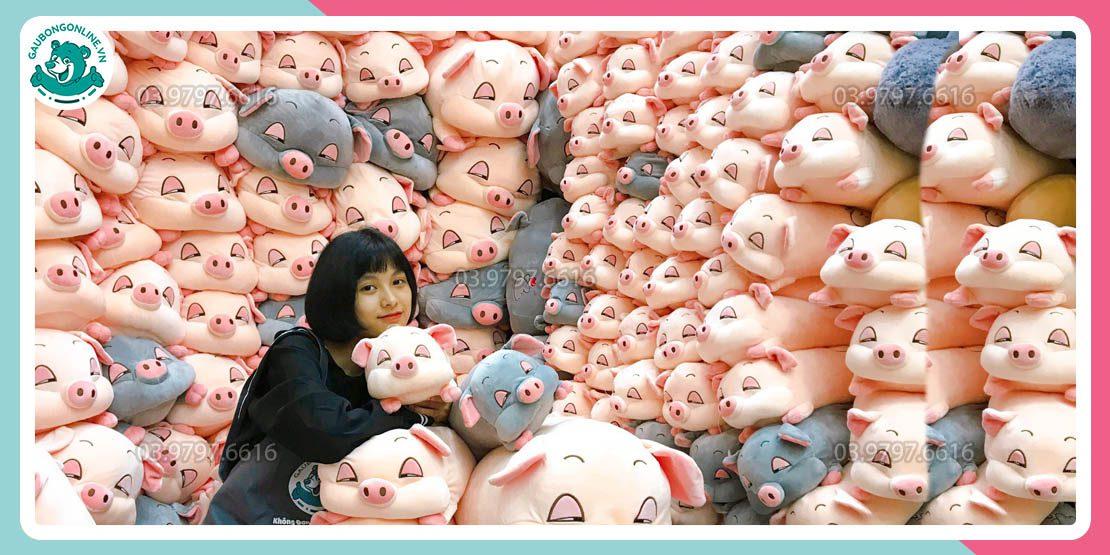 Bán Buôn Lợn Bông