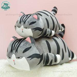 Mèo Bông Hoàng Thượng Nằm