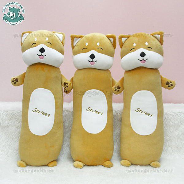 Chó Bông Shiba Sweet