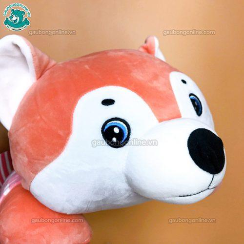 Chó Husky Áo Kẻ Bông