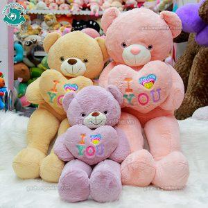 Gấu Bông Teddy Ôm Tim Sắc Màu