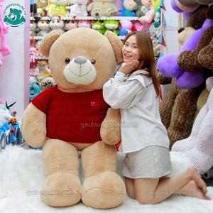 Gấu Bông Nhung Áo Len Đại