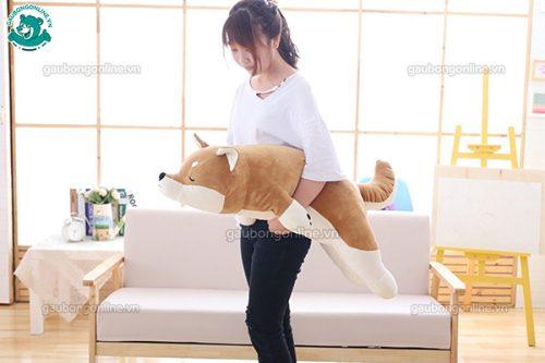 Chó Bông Akita Vàng(Big Size)
