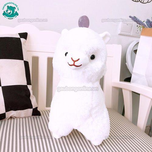 Cừu Alpaca Bông