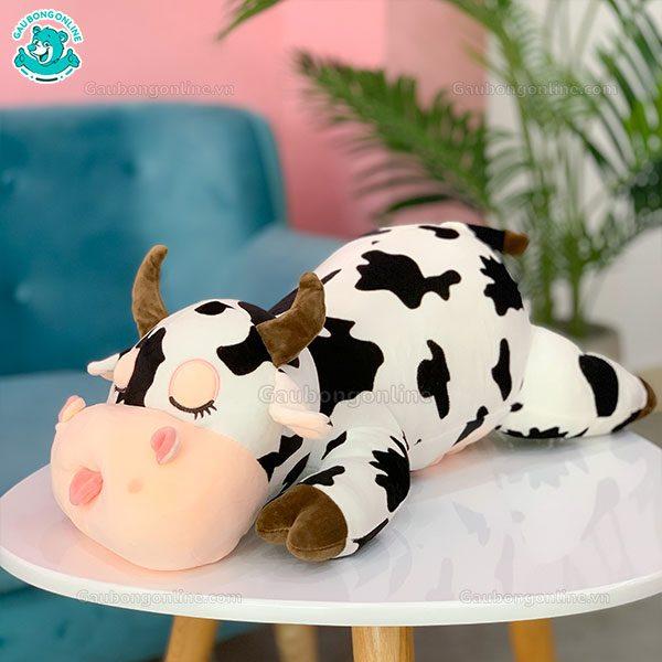 Bò Sữa Bông Nằm Lè Lưỡi