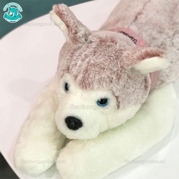 Chó Bông Husky Phát Sáng
