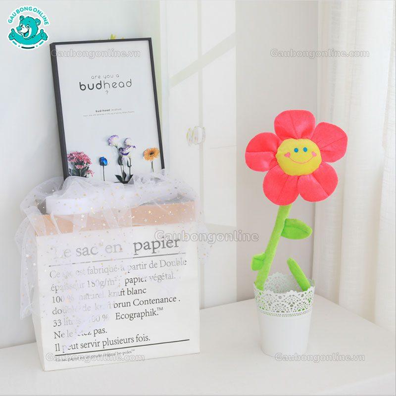Hoa Bông Cute