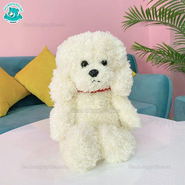 Chó Xù Bông Đứng