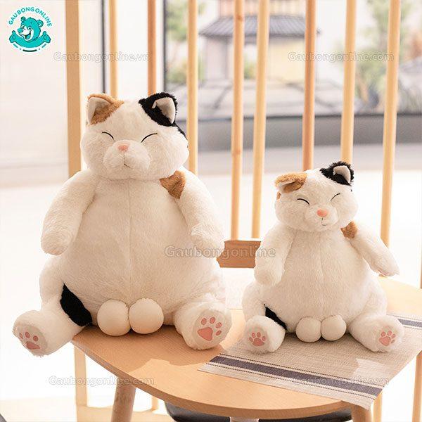 Mèo Đực Bông Bi Bự