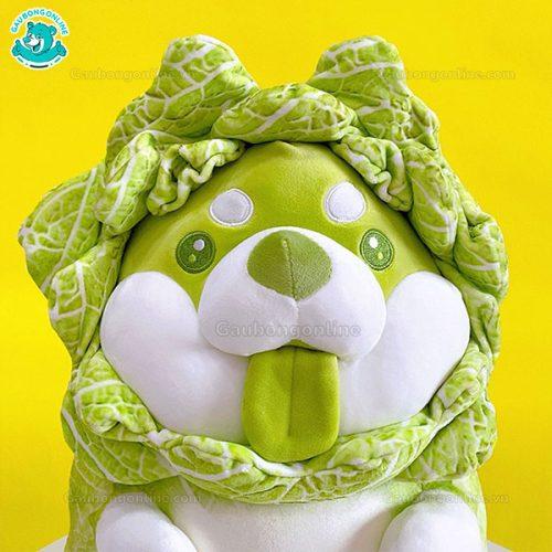 Chó Bông Shiba Bắp Cải Ngồi